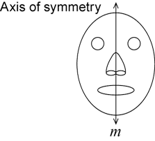 The axis of symmetry is drawn through the centre of the face from the top to the bottom.