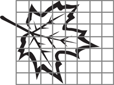 The image shows the outline of a leaf that is covered by a grid overlay.